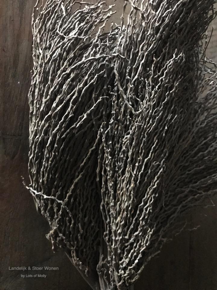 Droogboeket Palm