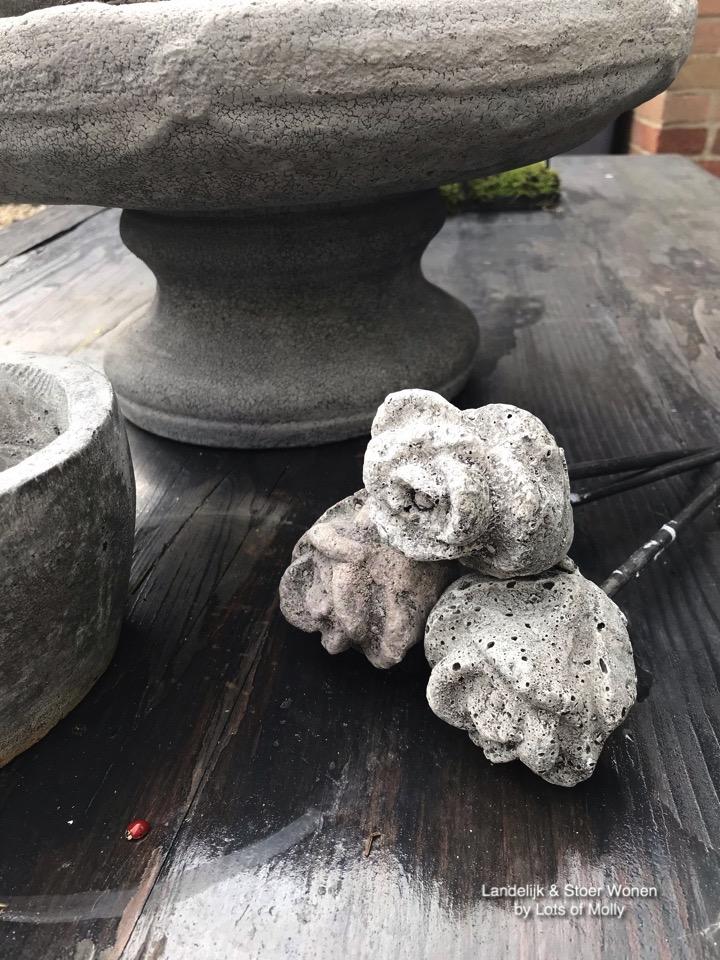 Roosje van beton Aura Peeperkorn